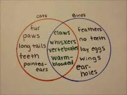 How To Complete A Venn Diagram How To Make A Venn Diagram