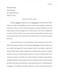 french essays french essay template