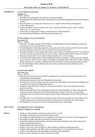 Mutual Fund Administrator Sample Resume Fund Admin Resume Samples Velvet Jobs 24