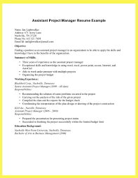 Good Project Manager Resume Sample Resume Sample Project Resume