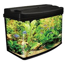 Fish Tank Interpet Fish Pod Glass Aquarium Fish Tank 64 L Amazoncouk
