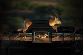 Цифровой фотоаппарат <b>Olympus</b> OM-D E-M1 mark II Kit 12-40mm ...