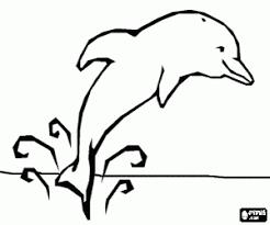 Gratis Kleurplaat Walvis Malvorlagen Und Ausmalbilder Von Tieren Zum