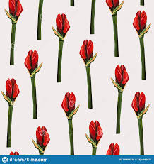 Lilybud Gardens By Design Tropical Red Lily Bud Flowers Light Background Floral