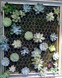 how to make a vertical garden. poke holes in the soil and plant your succulents. don\u0027t feel as though you have to fill box up completely plants will empty spaces how make a vertical garden i