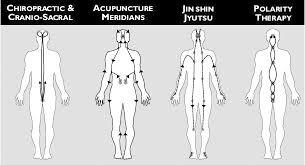Jin Shin Do Chart Dr Metz Fundamental Field Theory Therapy