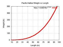 Halibut Weight Chart Pacific Halibut Wikipedia