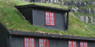 diy planting a living green roof