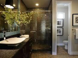 bathroom Bathrooms Design Dark Wood Cabinets Modern Luxury Master