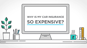 The world is developing at a frantic. Why Is My Car Insurance So Expensive The Zebra Youtube