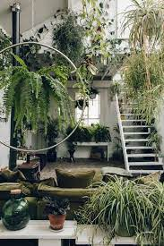 50 beautiful indoor plants design in