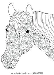 coloring book horse head page stock images royalty free vector for s vect