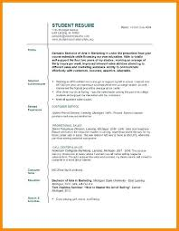 Resume Template For College Student Enchanting College Student Cv Template College Resume Template Sample Examples