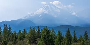 life in time of drought will mount shasta bottle its water for profit huffpost