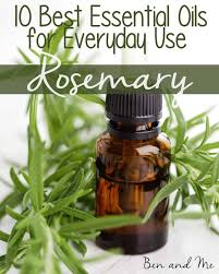 everyday uses for rosemary essential oil