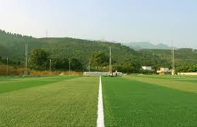 grass soccer field.  Grass Artificial Grass Manufacturer For Soccer Fieldin Gymnastics From  Sports U0026 Entertainment On Aliexpresscom  Alibaba Group With Soccer Field R