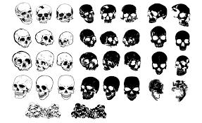 Skull Vector Art At Getdrawingscom Free For Personal Use Skull