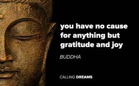 Quotes On Gratitude Cool 48 Gratitude Quotes To Remind You To Be Grateful