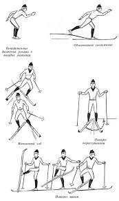 Лыжные ходы попеременные и одновременные Горнолыжные базы и  Лыжные ходы попеременные и одновременные