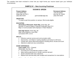 Free Resume Templates For Freshman Students And High School