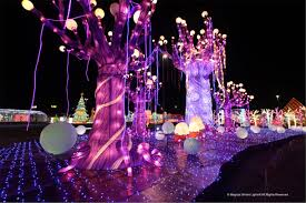 Magical Winter Lights Tickets A Magical Wonderland Of Lights Is Coming To Randalls Island