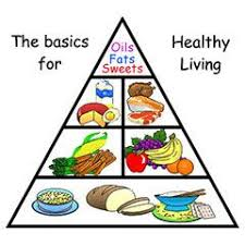 Food Group Pyramid Chart Pin On Monkey