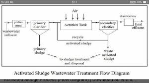 Flow Diagram Of Sewage Treatment Biology Microbes In