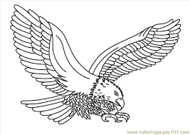 Small Picture Eagle Coloring Book Coloring Book of Coloring Page