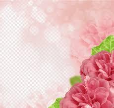 Flower Edge Design Pink Flowers Border Rose Graphy Microsoft Powerpoint Flower