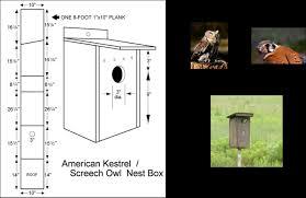 mount box 10 30 feet above the ground here for kestrel range map or screech owl range map