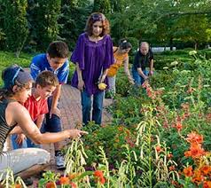 Image result for botanic garden