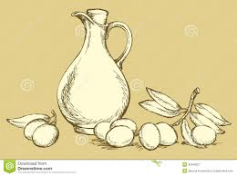 vector drawing still life of oil in jug and olive stock vector ilration