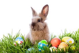 The Easter Bunny – What's that all about then? - PrettyGreen