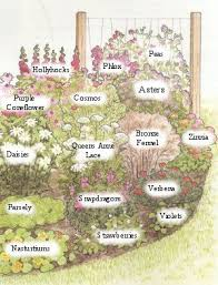 Small Picture The 25 best Flower garden design ideas on Pinterest Growing