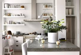 plants feng shui home layout plants. white kitchen cabinets and green house plants for interior decorating feng shui home layout