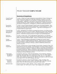 Resume Summary Statement Examples Management Oneswordnet