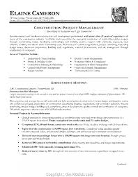 Construction Project Manager Resume Template Word New Industry