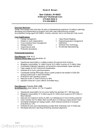 Bilingual Engineering Resume Sales Engineering Lewesmr