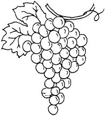 grapes clipart black and white. clip arts related to : clipart of grapes black and white i