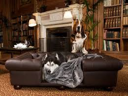 luxury dog beds. Luxury Dog Beds