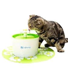 splash proof cat water bowl pet fountain automatic dispenser by for cats m7