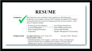 Professional Summary Resume Examples Fascinating How To Write Summary For Resume Functional Summary For Resume Free