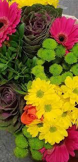 hd colour flower wallpapers peakpx