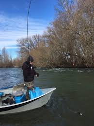 Yakima River Hatch Chart Yakima River Report Feb 11 2018 The Evening Hatch