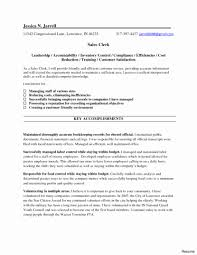 Deli Attendant Sample Resume Deli Clerk Resume Resume Templates 2