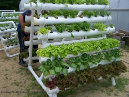 Small Picture How to build small PVC pipe vertical vegetable garden How to how