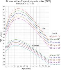 Peak Expiratory Flow Wikiwand