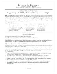 Private Equity Resume New Private Banking Resume Sample Banker Mortgage Example Breathelightco