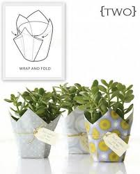 jazz up that last minute hostess gift with this nifty potted plant diy list