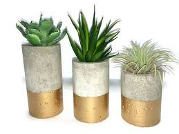 Gold And Concrete Planters